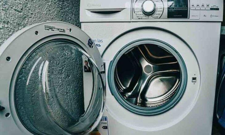 Gata entra em lavadora de roupas, enfrenta ciclo de 30 minutos e sobrevive. Foto: Pixabay