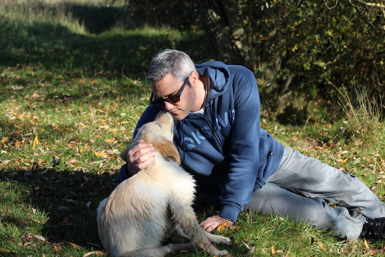 Dono beija seu cão - Foto Pixabay