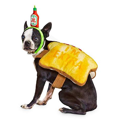 Bootique Toast of the Town Dog Costume - Foto Petco