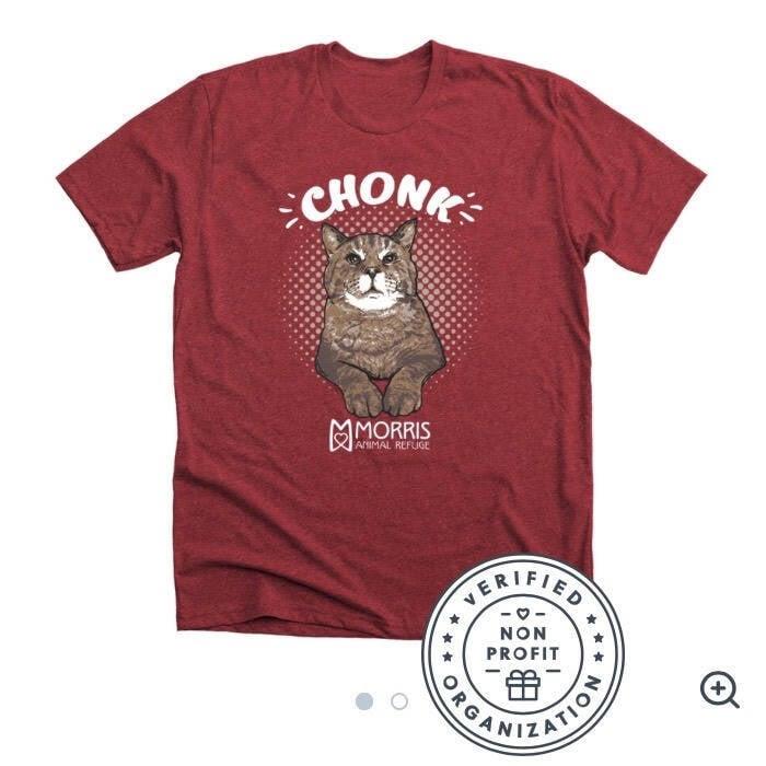 Camiseta gato Mr. B - Foto Morris Animal Refuge