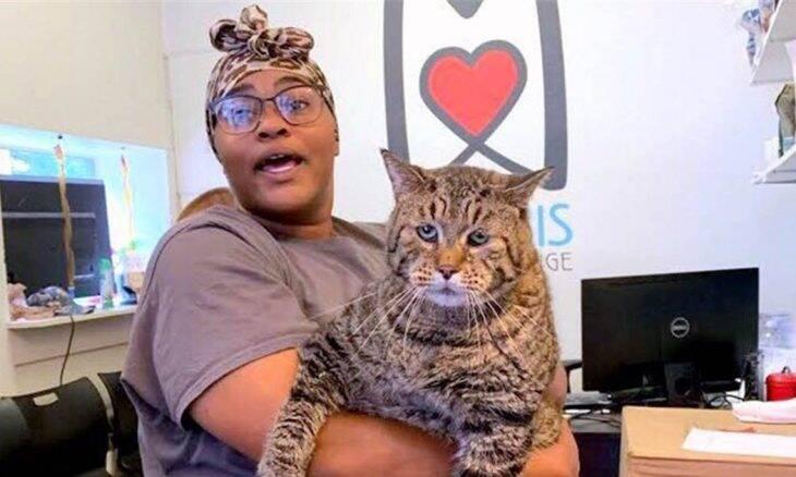 Gato Mr. B abre - Foto- Morris Animal Refuge