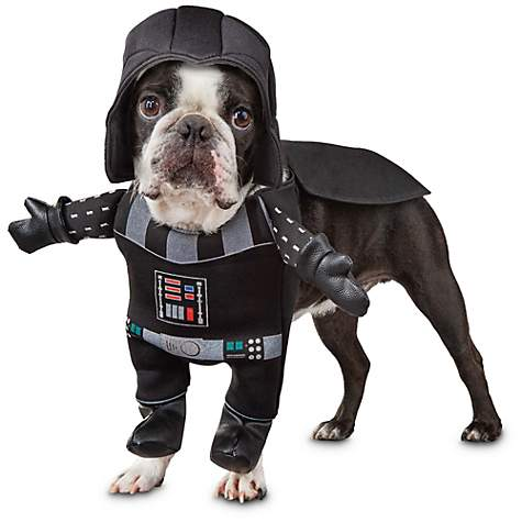 Star Wars Darth Vader - Foto Petco
