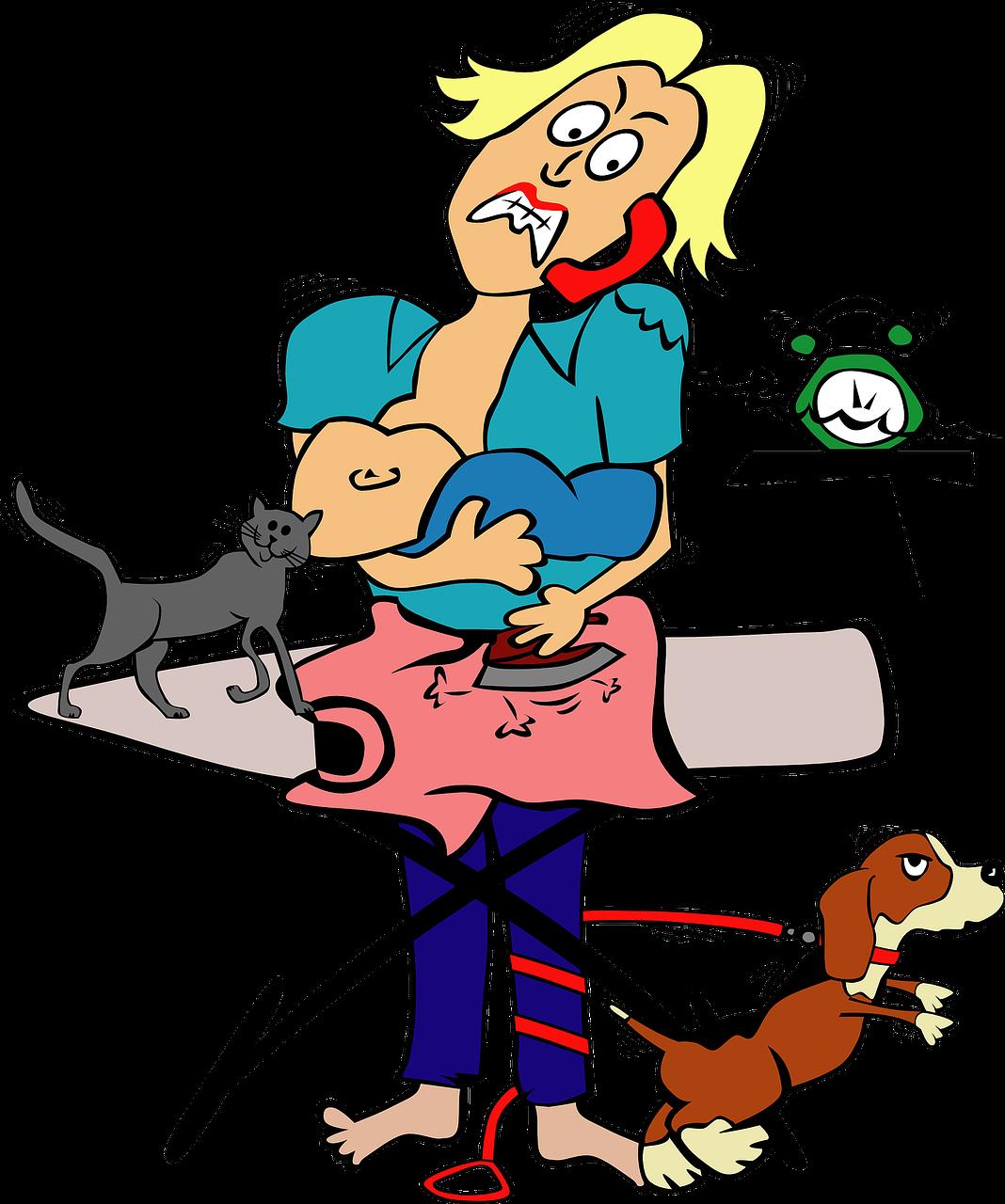 gato ferro de passar - Foto Pixabay