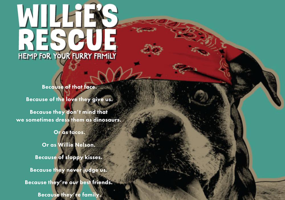 willie Nelson rescue cbd pets dog hemp - Foto Divulgação