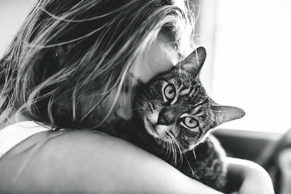 2019 'Cat-Human Relationships' photography competition winning image – Foto de Lexy Porrini from the US