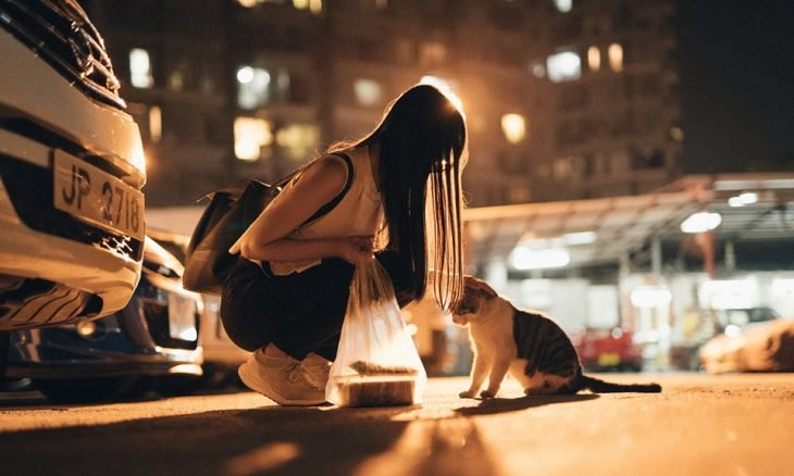 2019 'Cat-Human Relationships' photography competition winning image – foto de Jason NG from Hong Kong