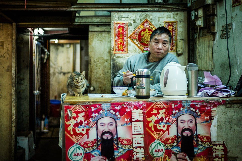 2019 'Cat-Human Relationships' photography competition winning image – foto de Jonas Chan from Hong Kong 2
