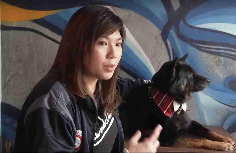 Videntes que 'conversam' com pets atraem clientes em Hong Kong