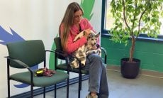 A cadela Dutchess e sua dona se reencontram - Foto Humaine Animal Rescue