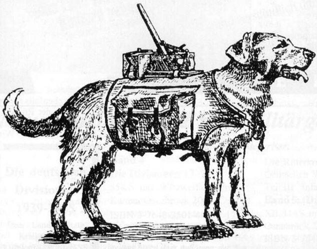 Cão bomba soviético - Foto Wikimedia Commons