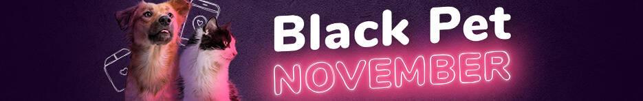 Black Friday na Petlove - Foto Divulgação