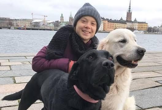 Greta Thunberg e seus cães, o labrador Roxy e o golden retriever Moses - Foto Twitter