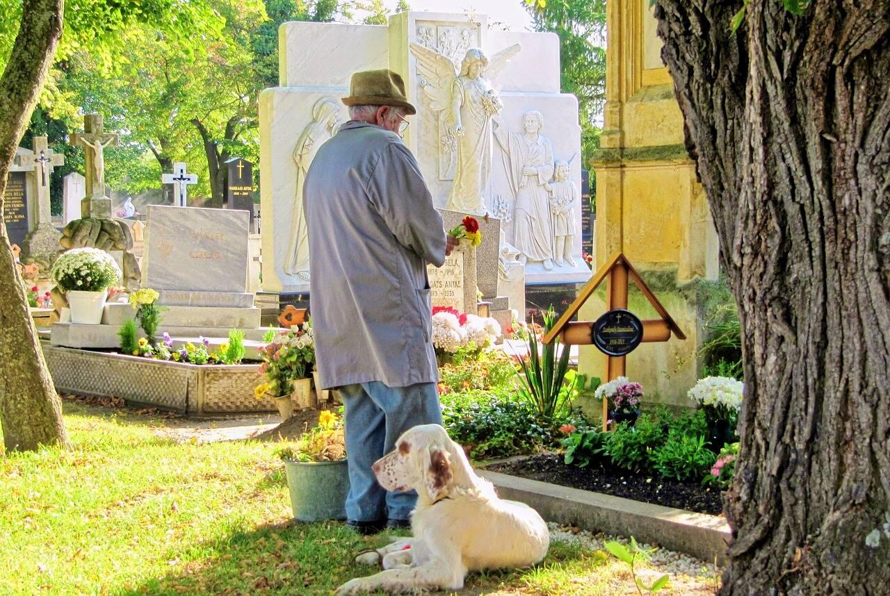 cão cemitério - Foto Pixabay