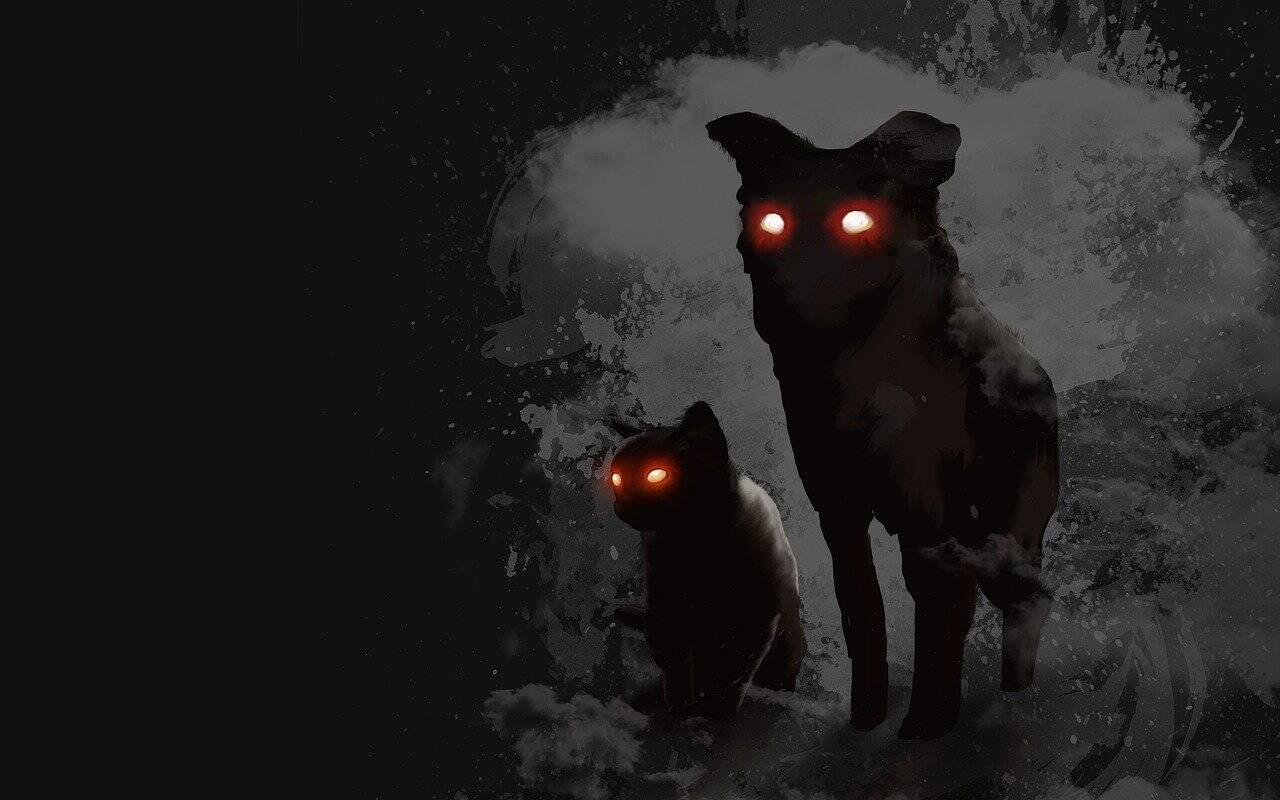 cão assustador - Foto Pixabay