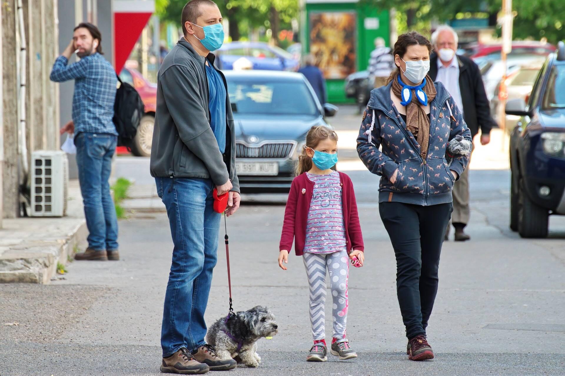 Cão menos empolgado com os passeios durante pandemia