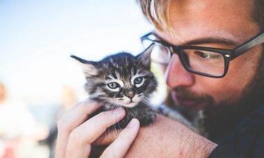 Homens que gostam de gatos