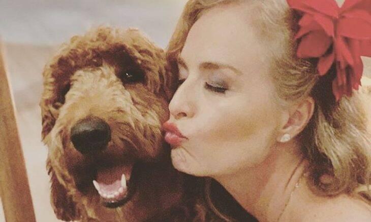Angélica posta foto 'blogueirando' na companhia de seus cães