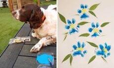 10 fotos que mostram cães exibindo seus dotes artísticos