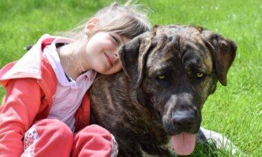 Crianças que crescem com cães se comportam melhor, diz estudo