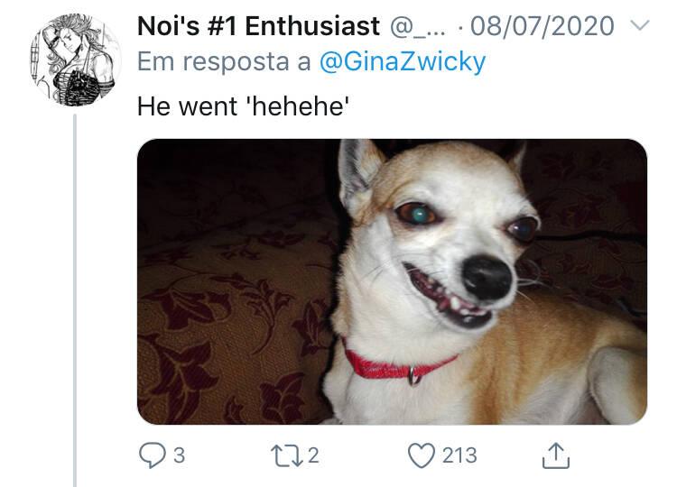Donos postam as 'piores' fotos dos seus pets