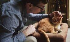 Aplicativo gratuito ajuda a cuidar da saúde e do bem-estar do seu pet