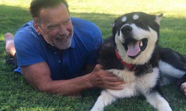 Schwarzenegger adota cão e o batiza com nome de personagem icônico