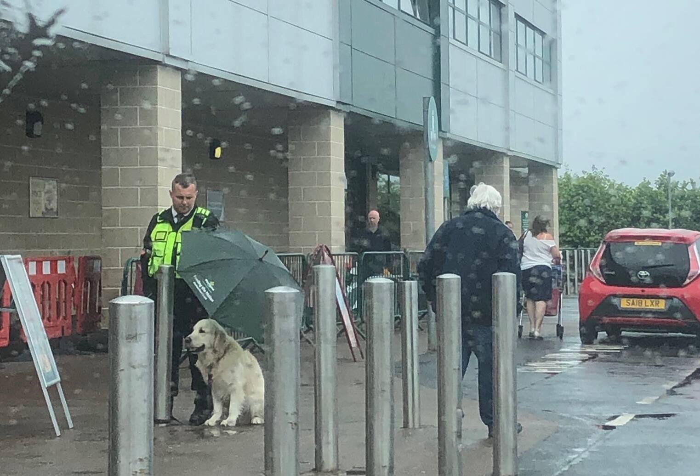 Segurança cede guarda-chuva para cão