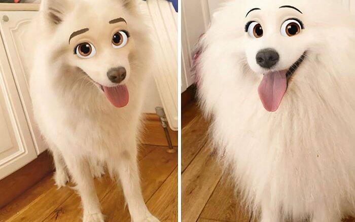 Deixe seu cão com a cara de um personagem da Disney com esse filtro do Snapchat