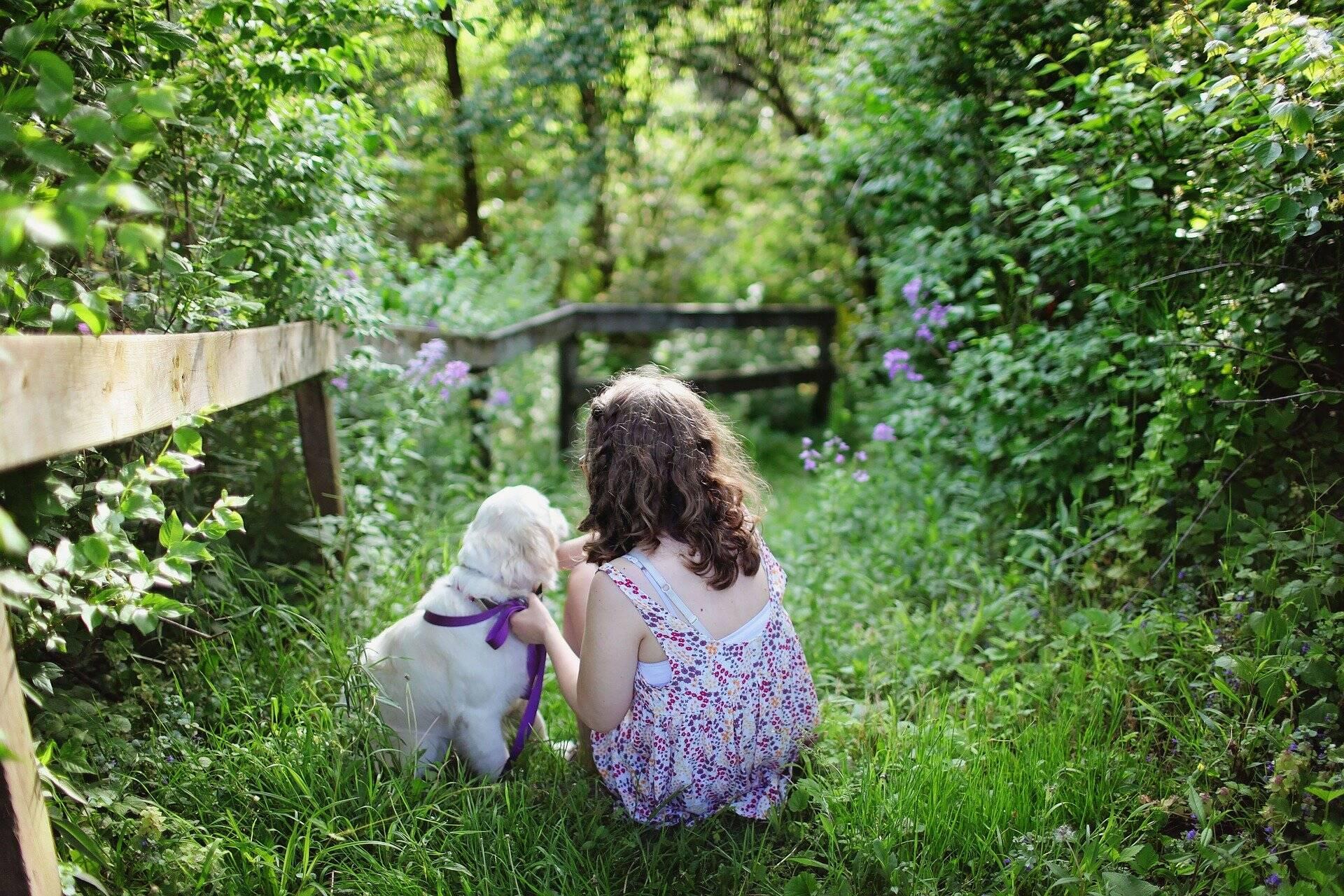 Estudo mostra que pets aliviam o estresse em famílias de crianças com autismo