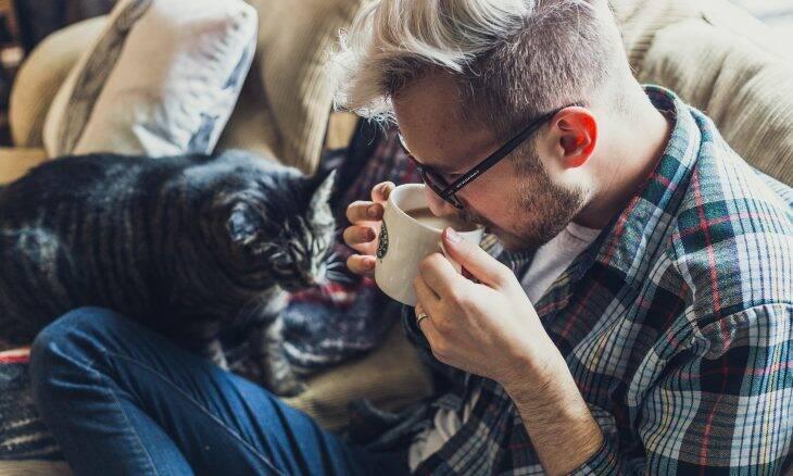 Maioria dos donos de gato diz que não suportaria a quarentena sem seu bichano
