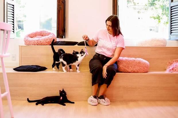 Nova cafeteria temática no Rio de Janeiro incentiva adoção de gatos