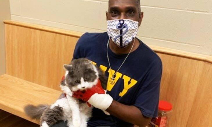 Homem reencontra gato desaparecido enquanto procurava substituto em abrigo