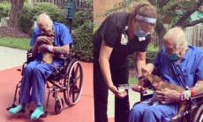 Veterano que se recupera de derrame reencontra chihuahua que salvou sua vida