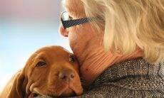 Casa de repouso estimula idosos a trazer seus pets durante hospedagem
