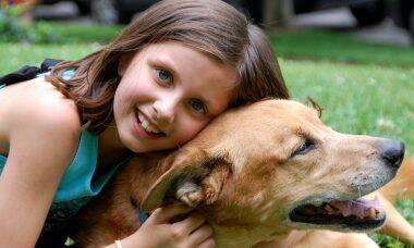 5 coisas para melhorar a integração entre cães e crianças