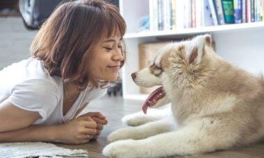 Setembro amarelo: pets contribuem no combate ao suicídio