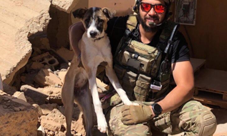 Por burocracia, cachorra de veterano está presa no aeroporto de NY há mais de dez dias