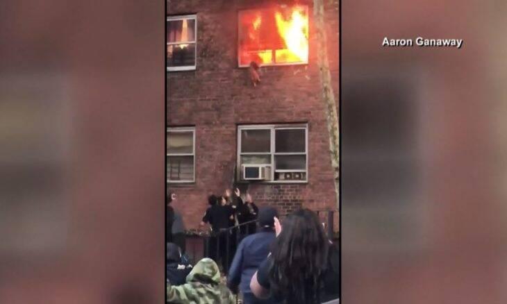 Vídeo: Veja momento dramático em que gato salta de apartamento em chamas