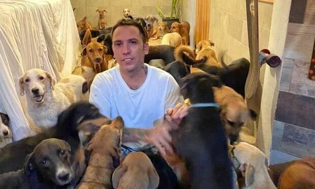 Homem recolhe 300 cães para protegê-los contra furação