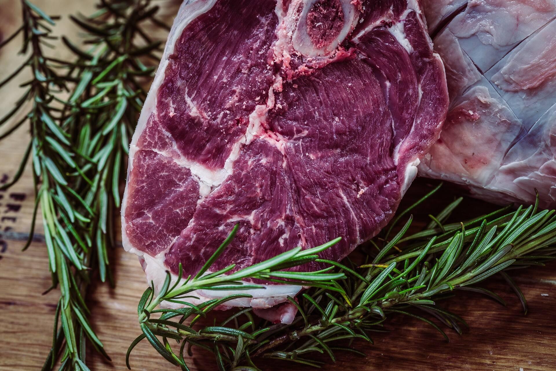 Pensa em inserir carne crua na dieta do seu cão? Reflita melhor