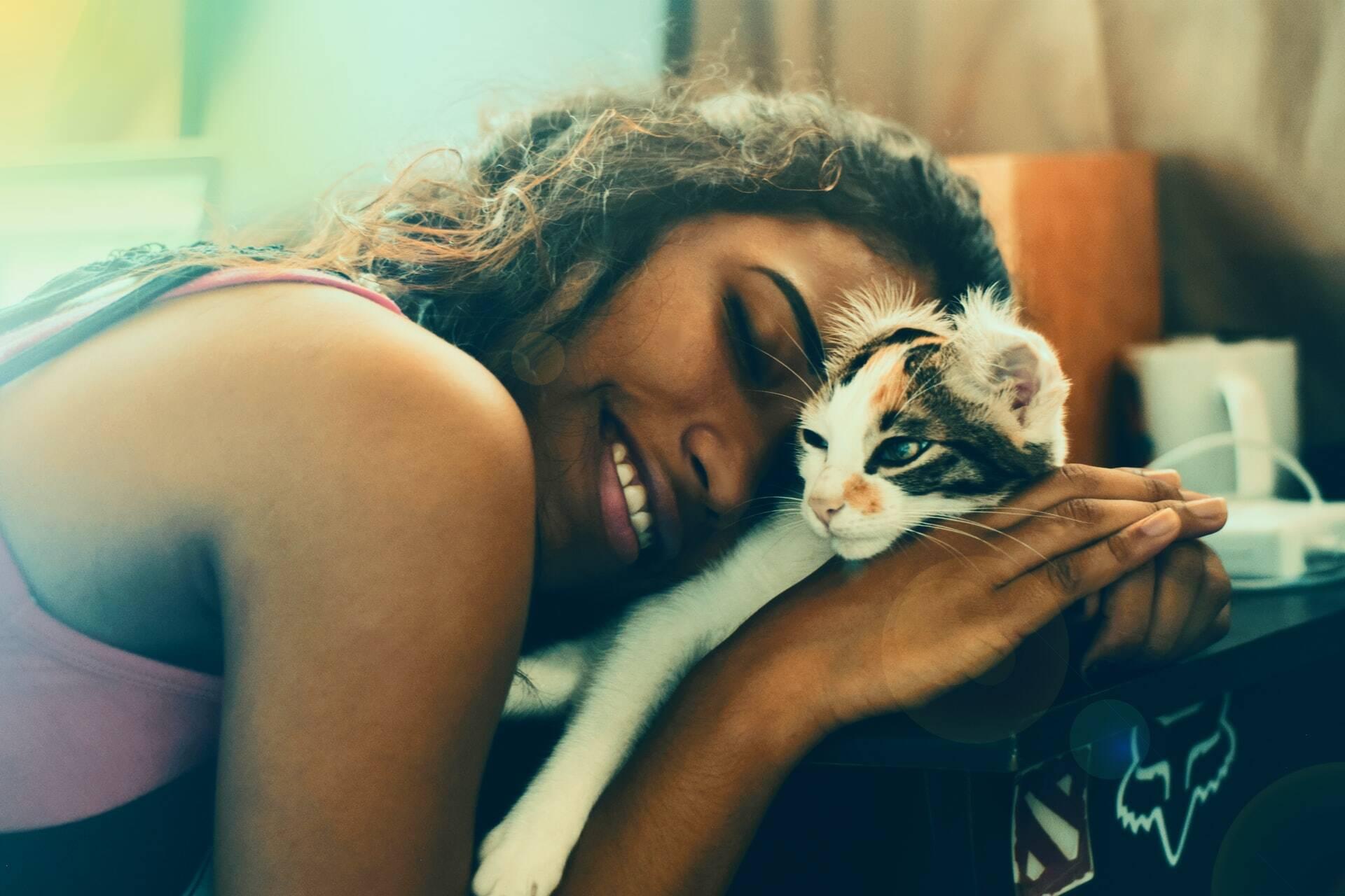 Saiba como estreitar as relações com o seu gato