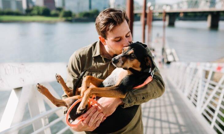 Estudo: Batimento cardíaco dos cães melhora 46% quando dono diz 'eu te amo'