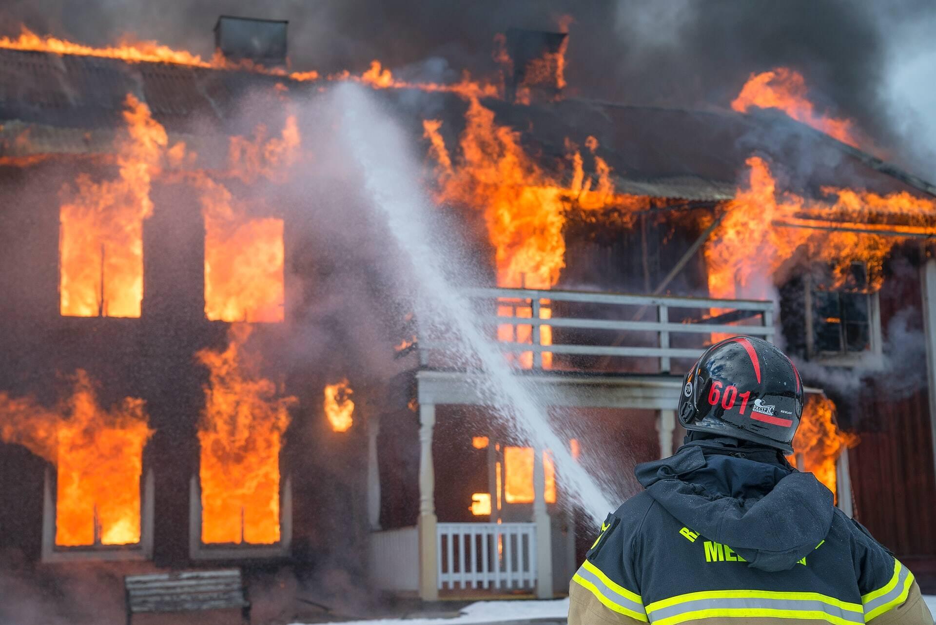 Bombeiros resgatam 3 cãezinhos de apartamento em chamas