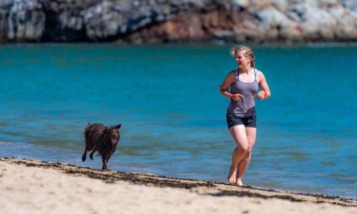 5 coisas que fazem dos cães os melhores amigos da saúde do homem