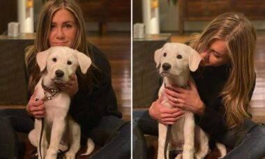 Conheça Lord Chesterfield, o novo cão de Jennifer Aniston