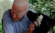 Cães de Joe Biden ganham contas no Twitter e Instagram