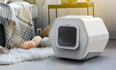 Com inteligência artificial, caixa para gatos ajuda a diagnosticar 7 doenças comuns