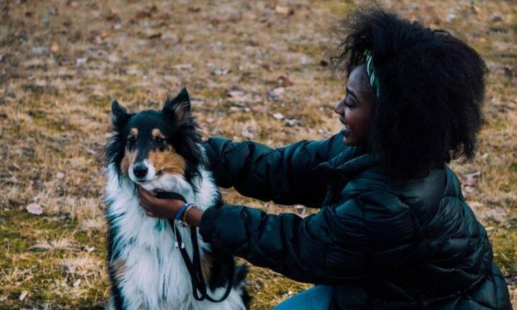 Vai sair de casa e deixar seu cão? Faça um carinho nele antes, diz a ciência