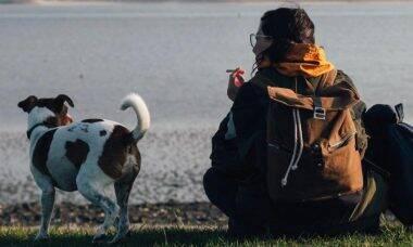 Veja as doenças que os fumantes podem estar causando em seus pets