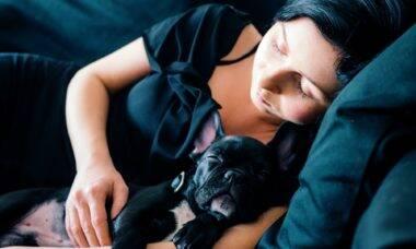 Dormir com cães faz bem para a saúde, indica novo estudo
